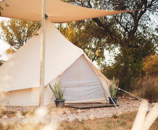 Leadwood Safari Camp